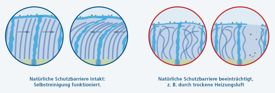 Natürliche Schutzbarriere