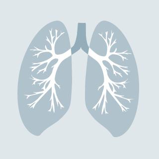 Bronchitis – wenn sich die Schleimhäute der Bronchien entzünden