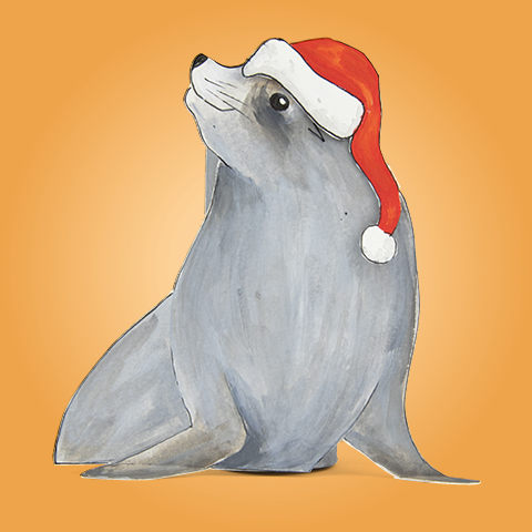 Simon, der Seelöwe, hat eine laufende Nase.