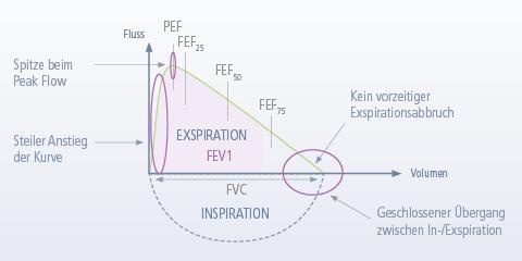 Übersicht Spirometrie Messwerte